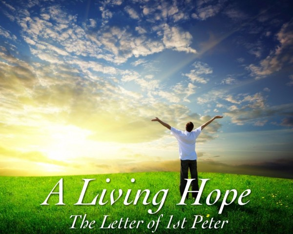 """Easter Wednesday: """"Who in His great mercy gave us a new birth to a living hope."""""""
